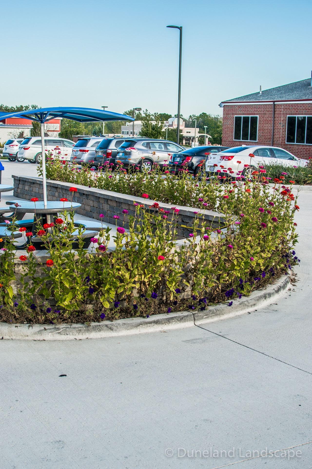 parking lot landscape ideas