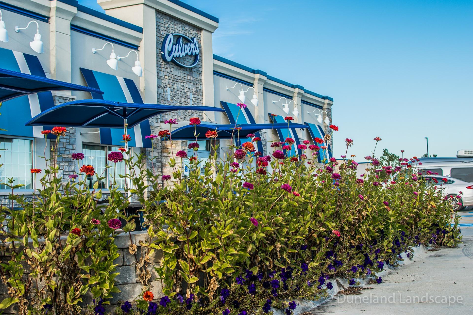 Culver's parking lot landscape flowers