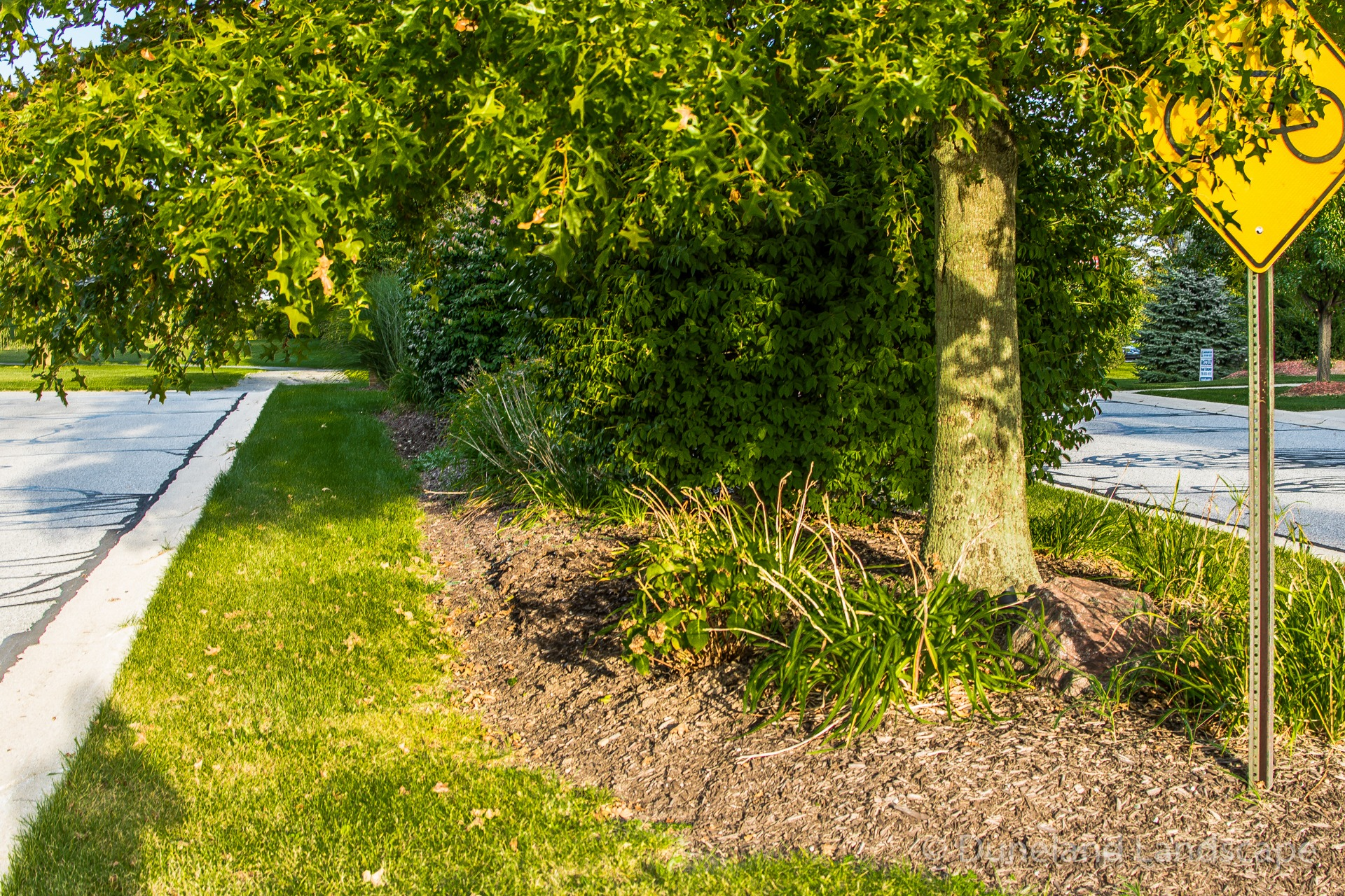 residential lawn care upkeep