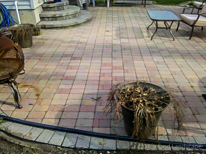 paver and stones