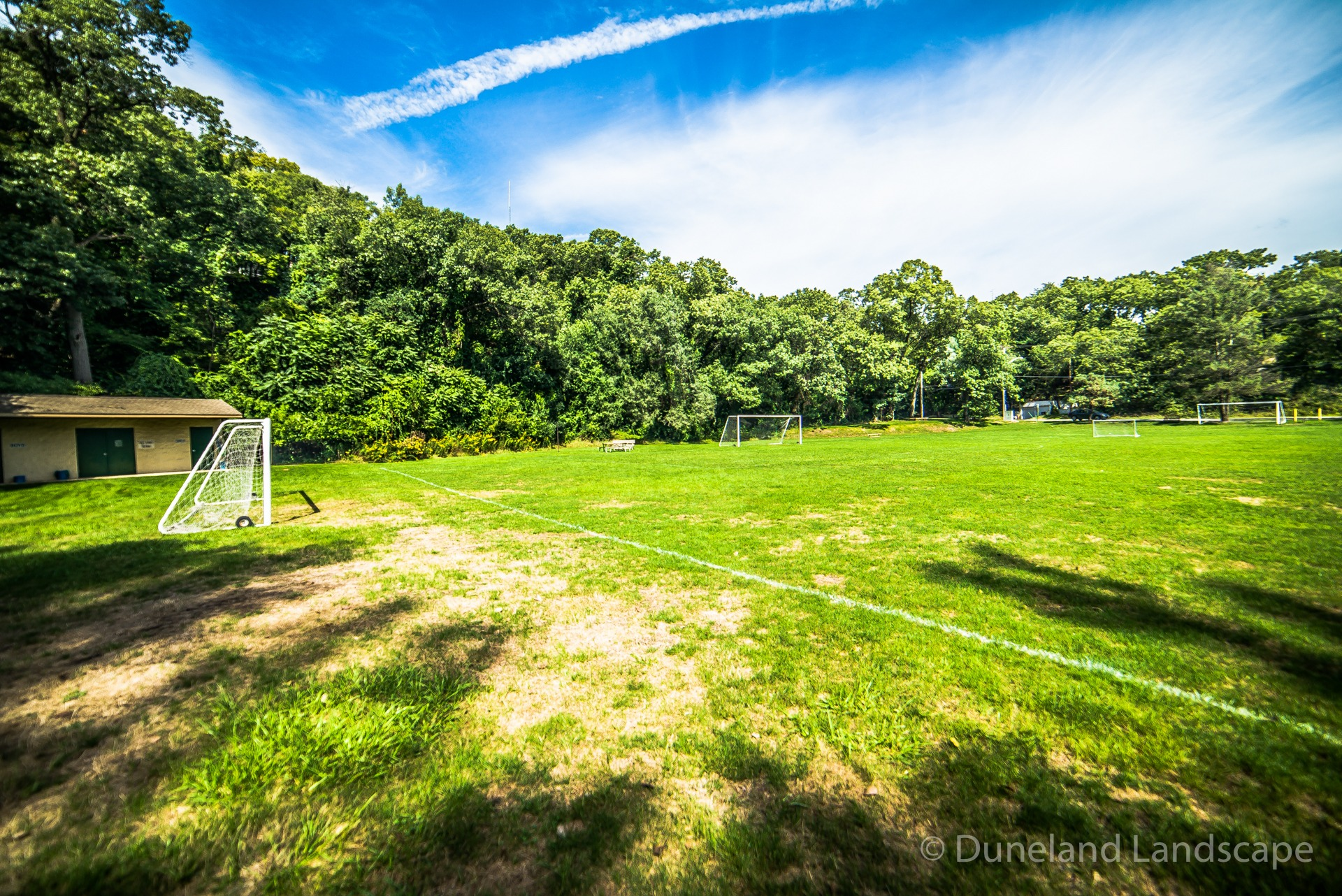 soccer field grass maintenance company