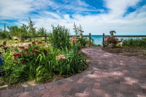Landscaping and paver pathway